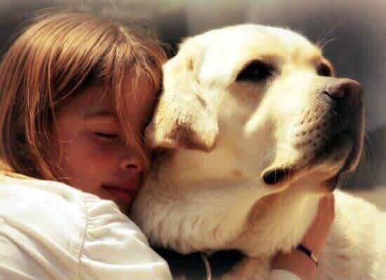 лечащая собака
